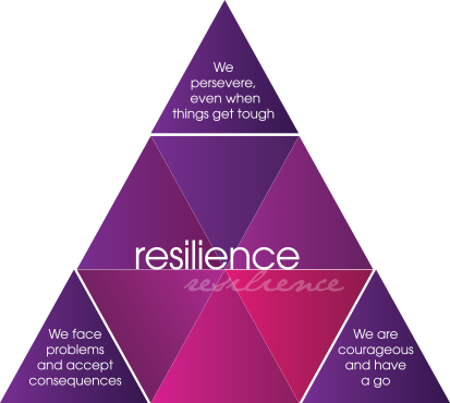 values resilience