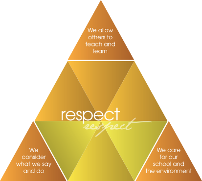 values respect